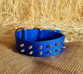 Dog Collar 16 in H Duty Nylon Royal Blue  (Available for purchase in-store-only KC)