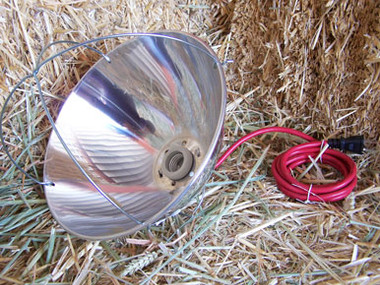 Hanging Heat Lamp Reflector For Warming Animals Use With A 250 Watt Bulb Purchase Separately