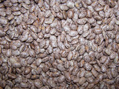 Pinto Beans Certified Organic, 25 lb.