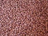 Pinquito Beans, 25 lb grown & packaged in the USA