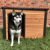 Precision Outback Log Cabin Dog House Large up to 95 lb. (in store pick up only)