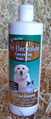 NaturVet Pet Oral Electrolyte CONCENTRATE 16 fl. oz., for Dogs & Cats, Makes 32 oz.