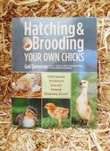 """P"" Hatching & Brooding Your Own Chicks, by Gail Damerow Paperback"