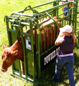 Powder River Value Chute I, Not Designed for handling bulls, (MANY SIZES AVAILABLE IN-STORE ONLY, CONTACT STEVE AT L.A. HEARNE CO. KING CITY 831-385-4841; CONTACT TINA AT L.A. HEARNE CO. PRUNEDALE 831-663-1572)