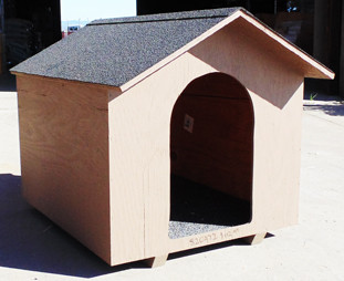medium dog houses