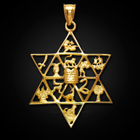 Star of David 12 tribes of Israel solid gold pendant.