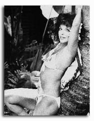 (SS179556) Joan Collins Movie Photo