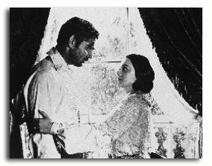 (SS200239) Cast   Gone with the Wind Movie Photo