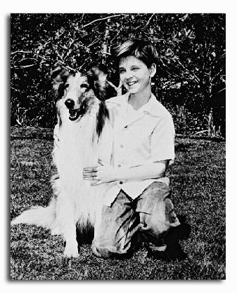 (SS2081079)  Lassie Television Photo