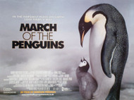 MARCH OF THE PENGUINS (SINGLE SIDED) ORIGINAL CINEMA POSTER