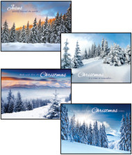 KJV Boxed Cards - Christmas, White Christmas