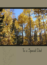 "To a Special Dad - 5"" x 7"" KJV Greeting Card"
