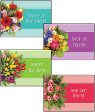 KJV Boxed Cards - Friendship, You are Loved