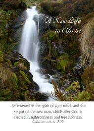 "A New life in Christ - 5"" x 7"" KJV Greeting Card 64"