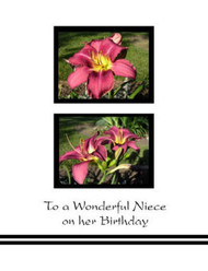 "To a Wonderful Niece on her Birthday - 5"" x 7"" KJV Greeting Card"