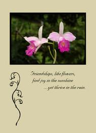 "Friendships like Flowers - 5"" x 7"" KJV Greeting Card"
