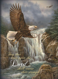 KJV Boxed Cards - Get Well, On Eagle's Wings by Heartwarming Thoughts