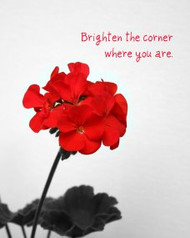 Brighten the Corner - 5 Blank Notecards