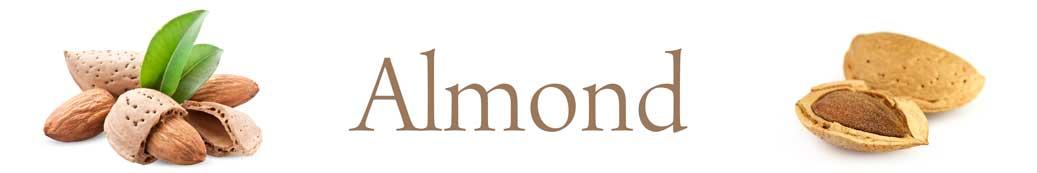 almond-01.jpg