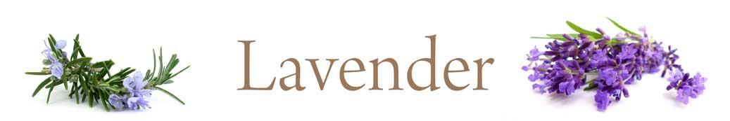 lavender-01.jpg