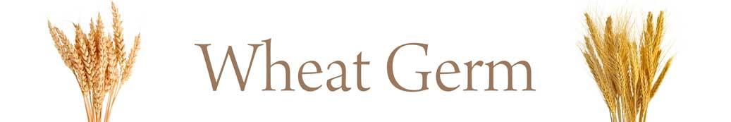 wheat-germ-01.jpg