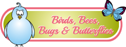birdsbeesbugsbutterflies20.png