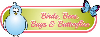 birdsbeesbugsbutterfliessectionheader.png
