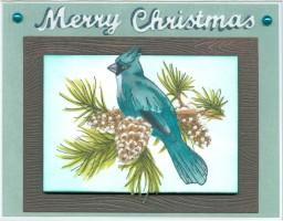 bluebirdbranchxmasrc19.jpg