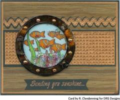 copperportholeshakerfishrc20.jpg