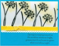 creepingspringpuffflowerje.jpg
