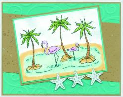 flamingostarfishsl16.jpg