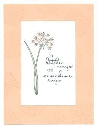 littlewayspuffflowersl19.jpg