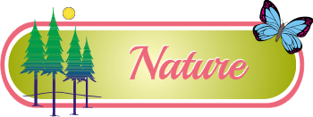 naturesectionheader.png