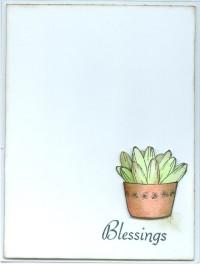 plantpotblessingsnw17.jpg