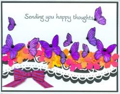 purplebflieshappyrc16.jpg