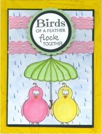 sillyumbrellabirdskm19.jpg