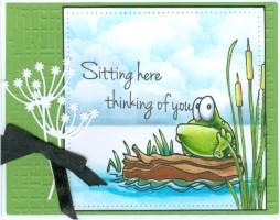sittingfrogcattailjw17.jpg