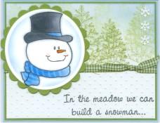 snowportraitmeadowsl.jpg
