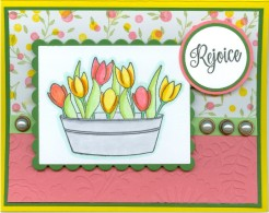 tuliprejoicekm16.jpg