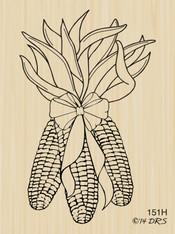 Indian Corn - 151H