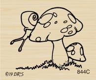 Snail Toadstool - 844C