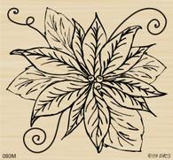 Giant Poinsettia - 093M