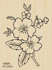 Dogwood Branch - 1092H