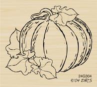 Simply Pumpkin - 304G