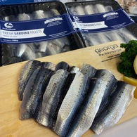 Sardine Bodies