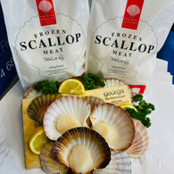 Australian Scallops without roe