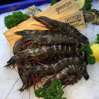 Raw Tiger Prawns