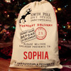 Santa's bags north pole express overnight delivery Gift Bags
