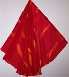 Fire Wing Flags