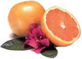 Grapefruit Seed Extract Essential Oil 15ml $18.95